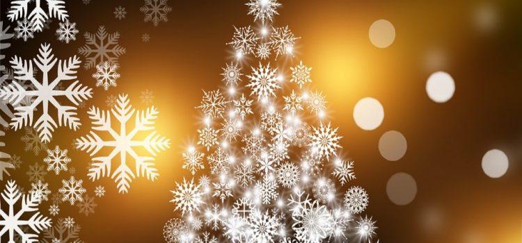 Bonnes fêtes de fin d'année !!!